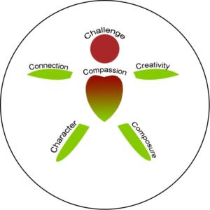 5 Cs Framework